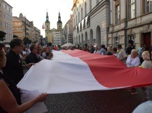 marsz-wolnych-polakow (1)
