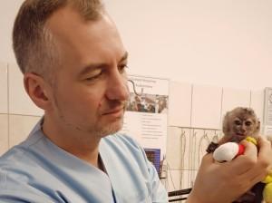 małpka2 z dr Wrzoskiem