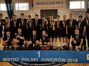 Mistrzowie Polski w piłce ręcznej